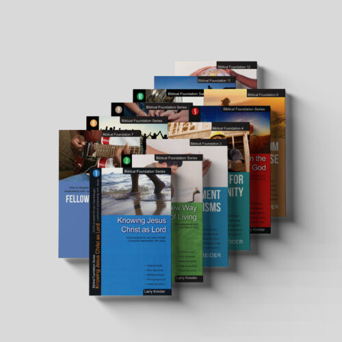 Biblical Foundations 12 Book Set