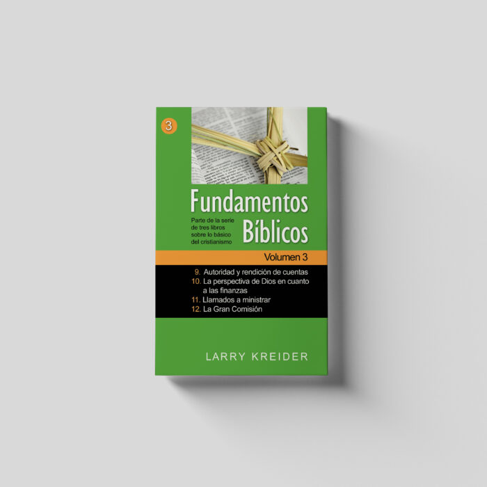 Biblical Foundations Spanish Volume 3